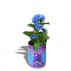 Cannette magique à fleur