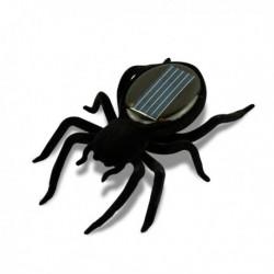Araignée solaire