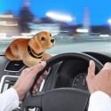 Chien à tête qui remue pour voiture
