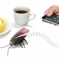 i-Robot Cafard contrôlable par iPhone