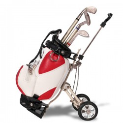 Set stylos sac de club de golf