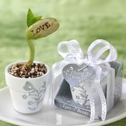 Pot avec haricot message LOVE
