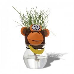 Tête d'animal aux cheveux d'herbes vertes