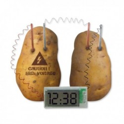 Réveil fonctionnant à l'énergie de pommes de terre